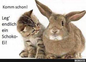 Besten Bilder, Videos und Sprüche und es kommen täglich neue lustige Facebook Bilder auf DEBESTE.DE. Hier werden täglich Witze und Sprüche gepostet! – Maria Majkita