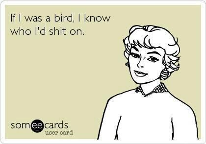 Sorry for the language but HAHAHA! Funny ecard
