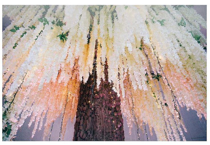 #wedding#tree, #wistaria, #lighting #wedding, #floral, #design, #wedding #idea
