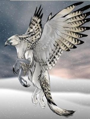 beautiful gryphon art