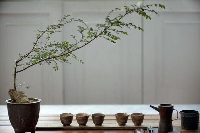 art of Chinese tea