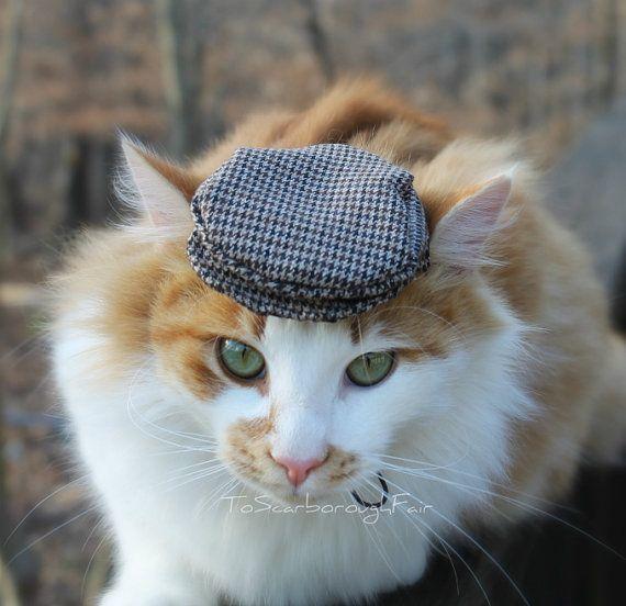 Ivy Cap para gatos - sombrero plano - conducción sombrero - canillita de vendedor de periódicos, Gato sombrero gorra, Jeff casquillo, cortador de queso