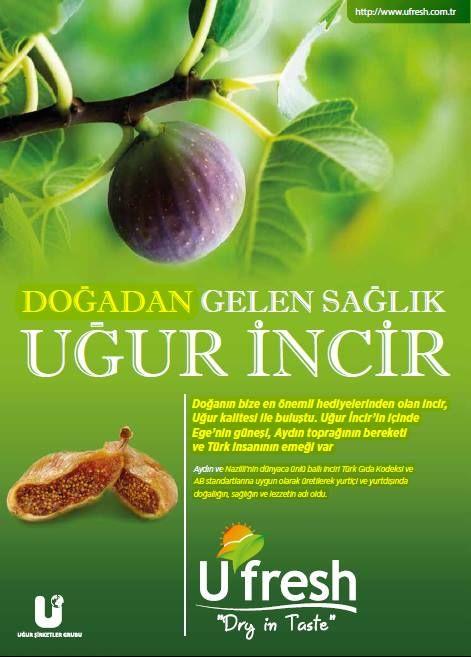 Uğur İncir'de Ege'nin güneşi, Aydın'ın bereketli toprakları ve Uğur kalitesi birleşti.  www.ufresh.com.tr