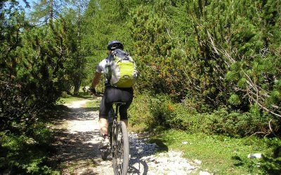 Biking Forest Experience. You choose the timing, we will take you across the woods while riding a bike of course.