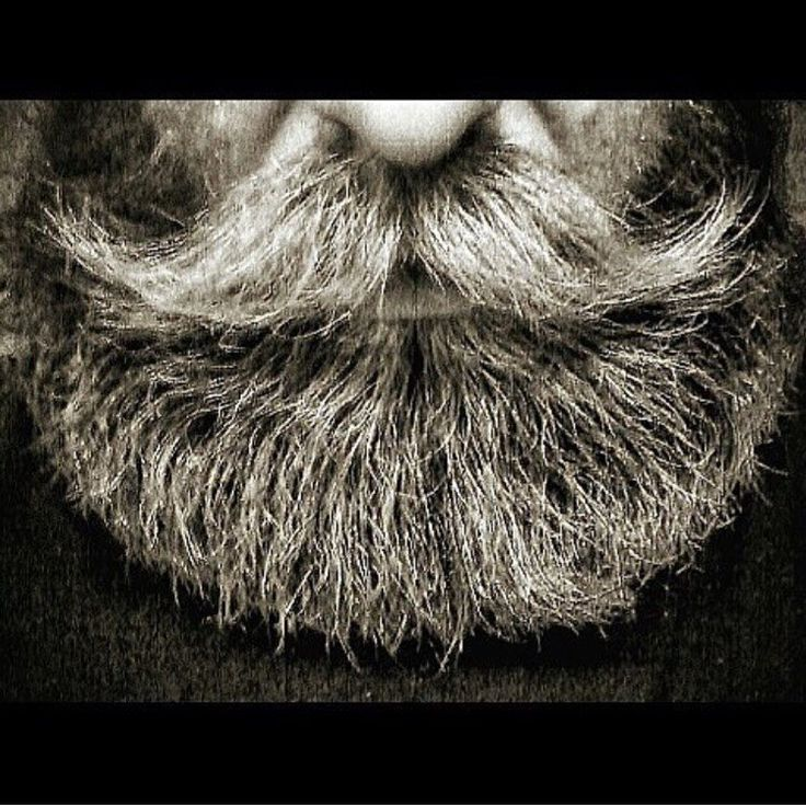 """#tbt #Backgroundbeard of TSBC """"logo"""". Get your creativity flowing and edit the hell out of it. Maybe it's time fore a new logo!? . #Theswedishbeardcommunity#beard#bearded#beardlife#beardlove#beardoil#moustache#beardman#mustache#mustachewax#skägg#skäggvård#beardstyle#barber#barberlife#beardedlifestyle#eatclean#beardgrooming#beards#blackandwhite#logo#skäggtorsdag by theswedishbeardcommunity"""