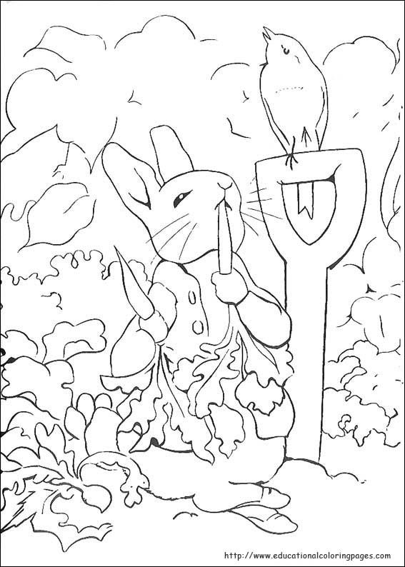 38 best 2015-16 Season images on Pinterest Peter rabbit, Beatrix - best of bunny rabbit coloring pages print