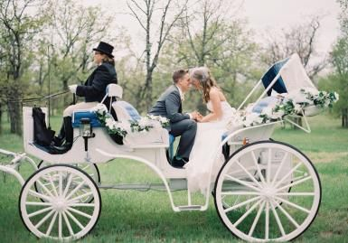 Vintage horse carriage. Wedding by Blueberry Hill Events. Photo by Aaron Snow Photography. #wedding #carriage #buggy