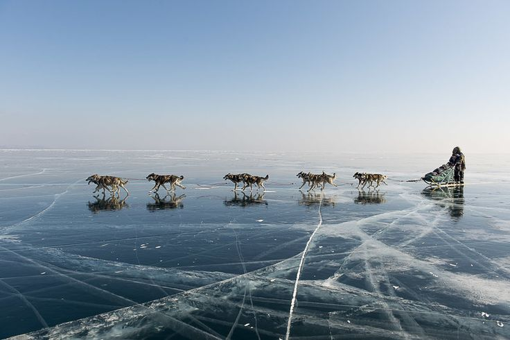 Pack work on the pack ice. Nicolas Vanier and his sled dogs explore some very cool – make that very cold – places in Siberia.
