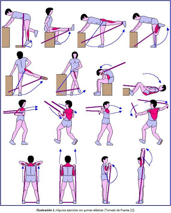 http://www.ejerciciosconpesas.es/wp-content/uploads/2010/10/ejercicios-para-las-piernas-.gif                                                                                                                                                                                 Más