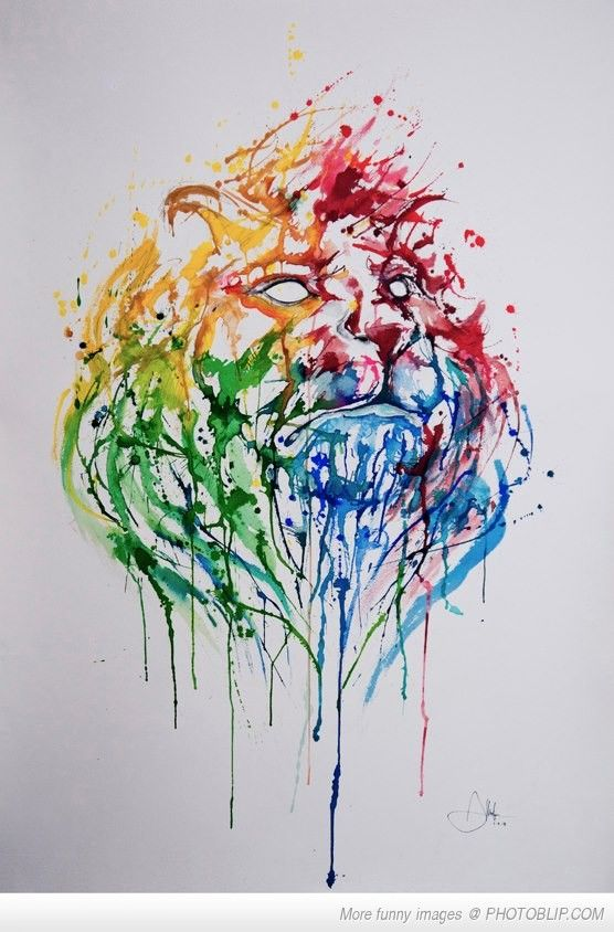 Cool Splash Painting Of A Lion