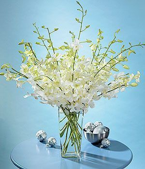 Flower Creations :: White Dendrobium Orchids