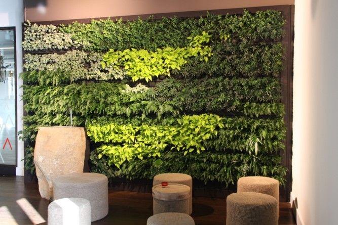 LivePanel indoor green wall