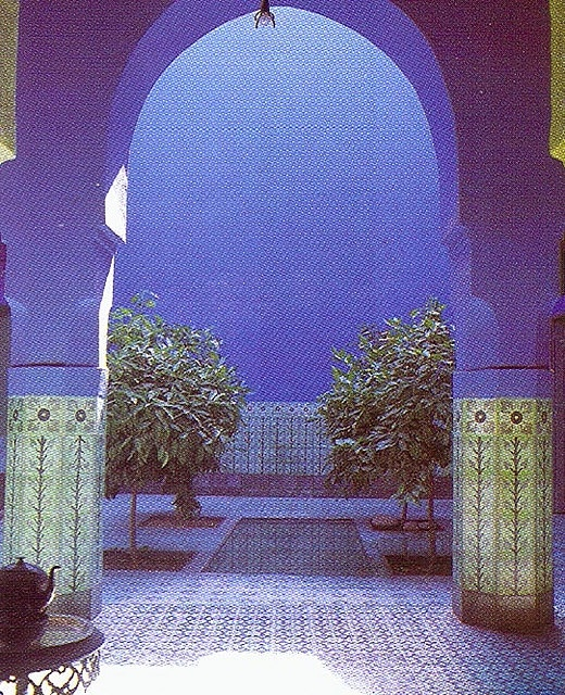 17 Best Images About Garden Majorelle On Pinterest