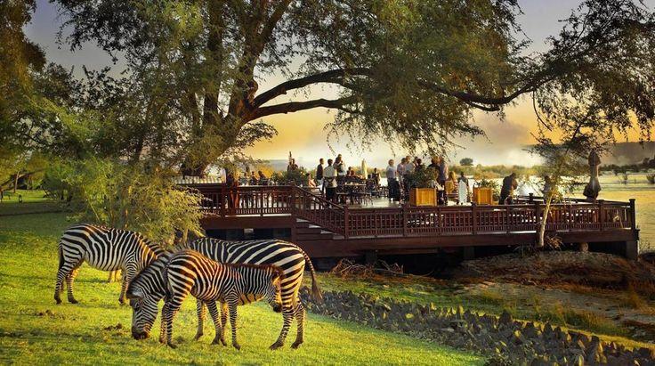 Royal Livingstone   Bench Africa