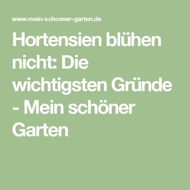 29 besten Garten Bilder auf Pinterest Gardening, Garten ideen - gartenliege klappbar aldi