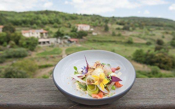 Diesen leckeren Gartensalat serviert die Domaine de Ribérach in Bélesta.