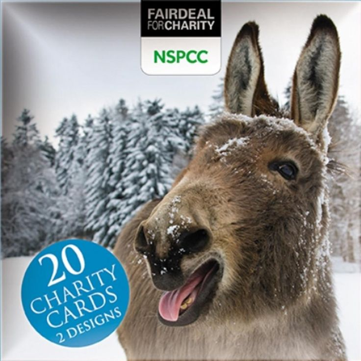 Box of 20 Donkeys NSPCC Fairdeal Charity Christmas Cards | Cards | Love Kates
