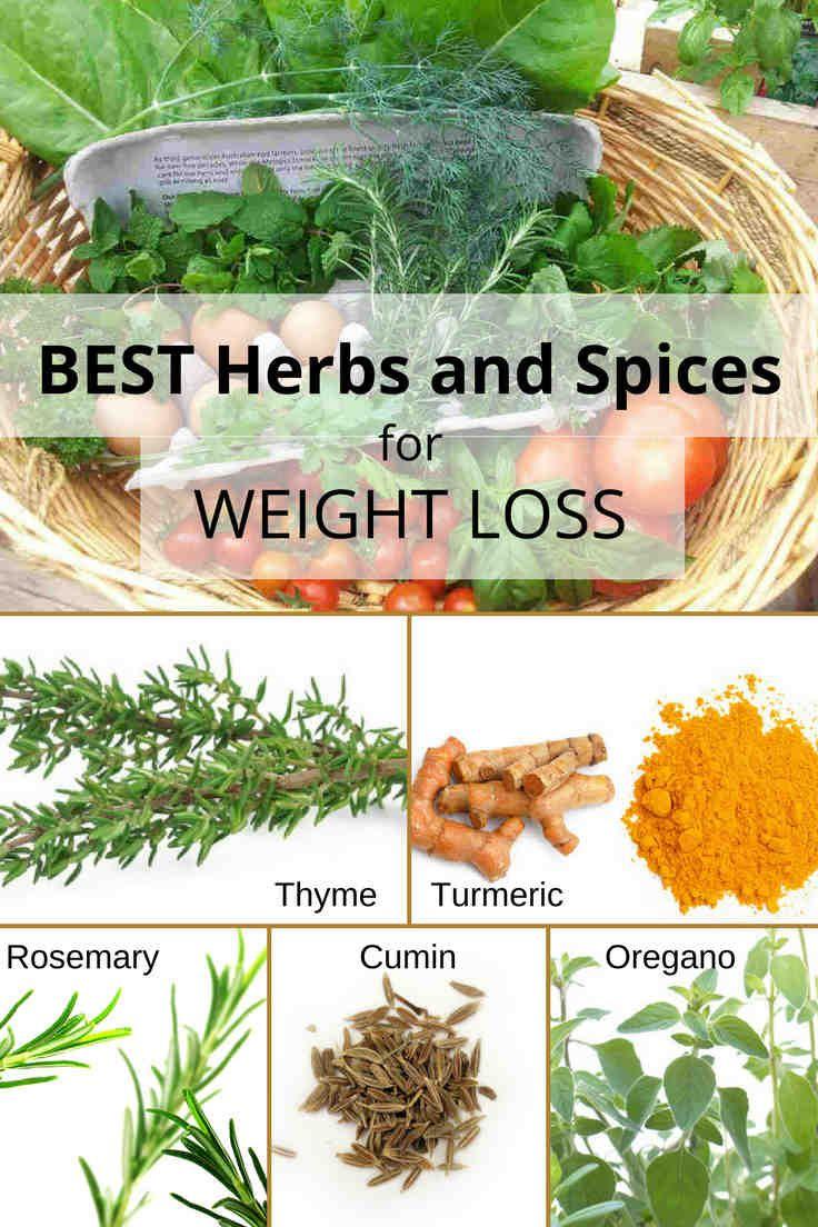 Cf diet plan photo 4