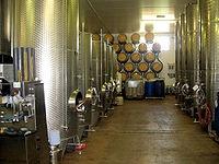 Wijn                                   Een glas witte wijn en een glas rode wijn.       Wijn is een drank die ontstaat na het vergisten van het sap van vruchten, gewoonlijk druiven. Het volledige proces van wijnbereiding noemt men vinificatie. Er zijn verschillende soorten wijn: rode wijn, witte wijn, rosé en mousserende wijn zoals Champagne en Lambrusco.