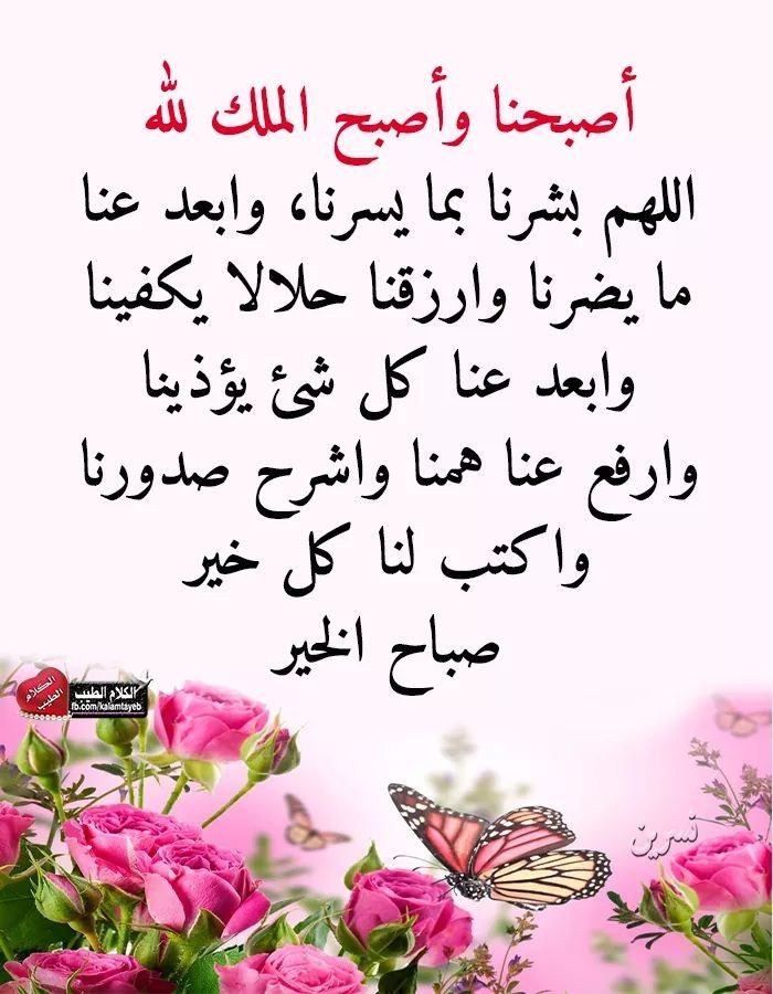Pin By Mohammed Ismail On Sabah Al Khair Wisdom Quotes Life Picture Quotes Morning Quotes