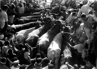 Un montón en la entrada a la Plaza de Toros #sanfermines #Pamplona :: The running of the bulls