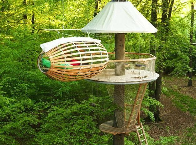 31 Best Treehouse Wickes Stories Images On Pinterest