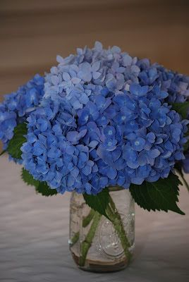 Blue hydrangea centerpieces in mason jars