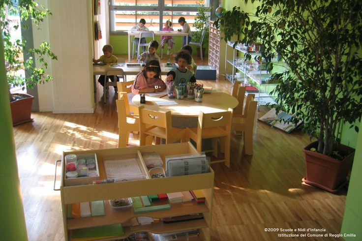 LIVE PLANTS in a lovely Reggio Emilia classroom environment.  I love the size of these plants!