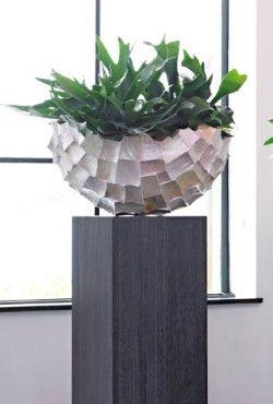 http://artiplant.nl/product-categorie/pot-en-plant/page/3/