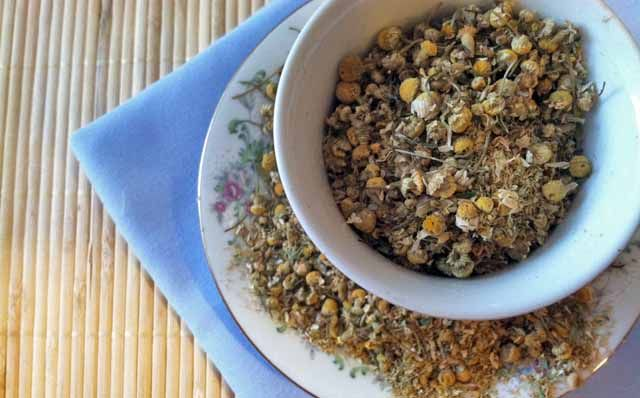 Chamomile is a wonderful herb for children as it is calming, soothing and helps with tummy troubles, teething and colic!