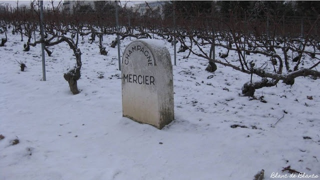13 days until Christmas. Why not do some wine travelling among snow?