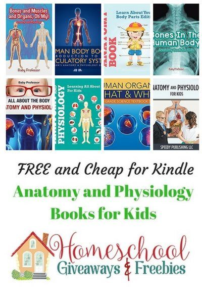 Free and Cheap Anatomy and Physiology Kindle Books