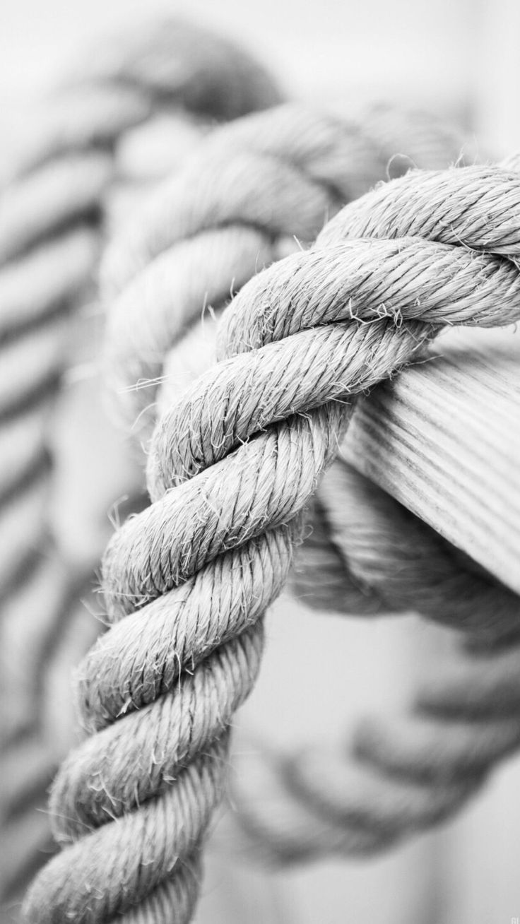 White Marine Knot Rope iPhone 6 Plus HD Wallpaper