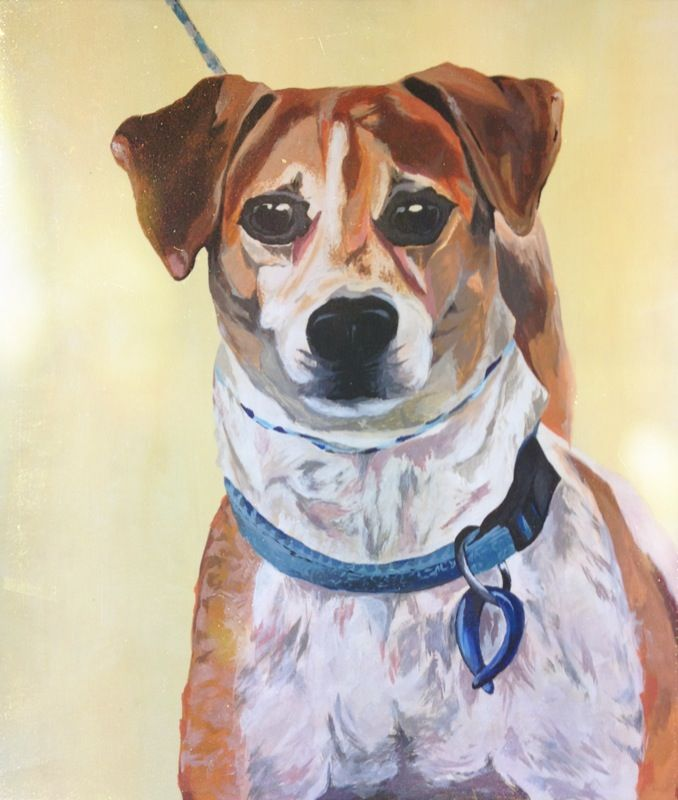 'Fonzie' from the Auckland SPCA. Acrylic painting by Sophie Gill