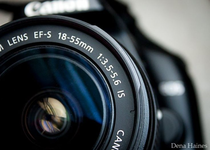 How To Find Your Lens' Sweet Spot: A Beginner's Guide to Sharper Images