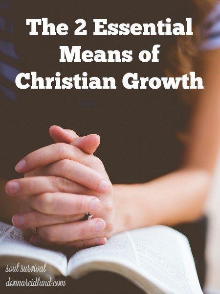 """""""The 2 Essential Means of Christian Growth"""" + LINKUP - I've noticed that most people either find prayer a natural part of their Christian life or thoroughly enjoy studying the Bible. But rarely, have a met someone who says both come easily and naturally to them. Yet, it's the two of them working together that are God's essential means of Christian growth."""