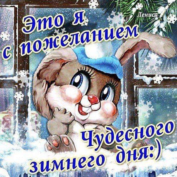 С добрым зимним утром картинки прикольные смешные с надписями анимашки