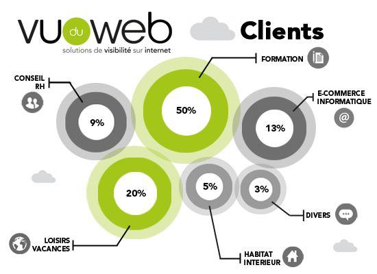 Typologie des clients de Vu du Web - Infographie