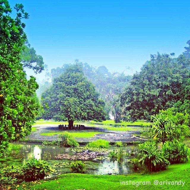 instagram @Ari Vandy | Bogor Botanical Garden, Indonesia