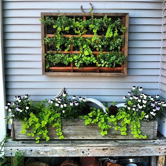 Cute Garden Boxes #casasnap   Source: Instagram User Msmirandajones