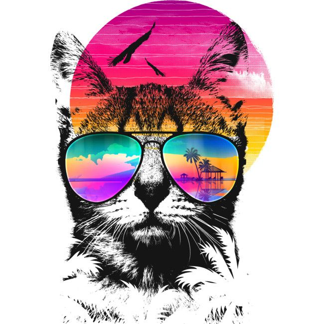 Summer Cat Is A T Shirt Designed By Clingcling To