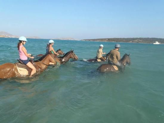 Heading out from the beach to swim the horses in #Paros island