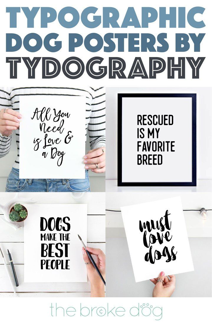 Tydography sells gorgeous printable typographic dog posters for the stylish pup lover! Best of all, they're absolutely affordable! Check out our interview with Tydography's founder and designer, Lisa, and score 20% off your purchase this month only with code THEBROKEDOG.