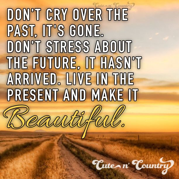 60 Best Quotes I Like Images On Pinterest Thoughts Proverbs Awesome Country Life Quotes And Sayings