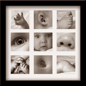 Crafty MamaCrafty Mama. Baby rooms. Decorating. Photography. Grey and white. Baby parts. Tiny toes.