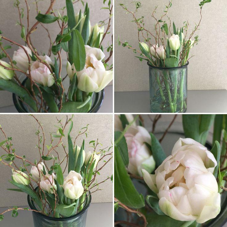 Wohnbrise: Tulpenliebe
