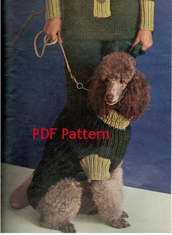 13 Best Knitted Dog Sweaters Images On Pinterest Pets Dog