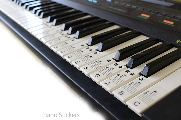 Music Keyboard or Piano Stickers 61 KEY SET learn to play faster LAMINATED clear plastic PS1C 61: Amazon.co.uk: Musical Instruments