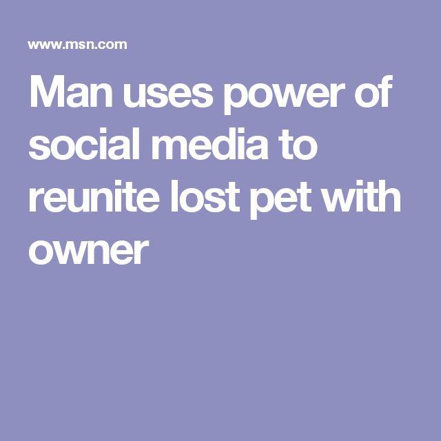 De 25+ bedste idéer inden for Lost pets på Pinterest Rainbow bridge - lost pet poster