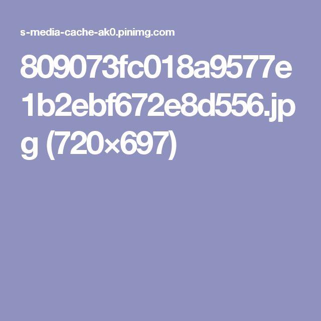 809073fc018a9577e1b2ebf672e8d556.jpg (720×697)